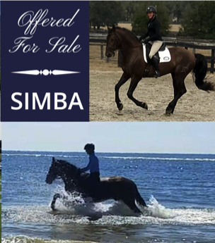 FPSH Classifieds - Foundation for the Pure Spanish Horse